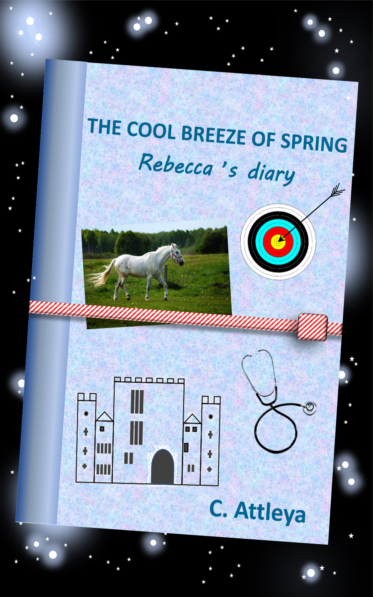 Cover of Rebecca's Diary