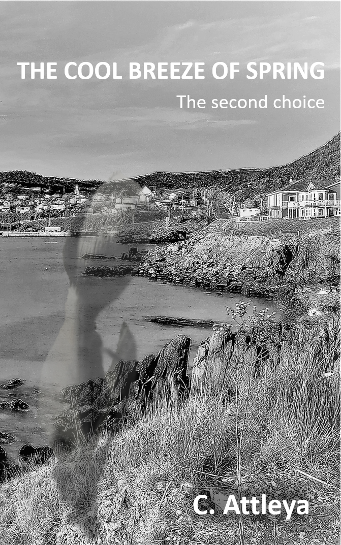 Cover of The second choice